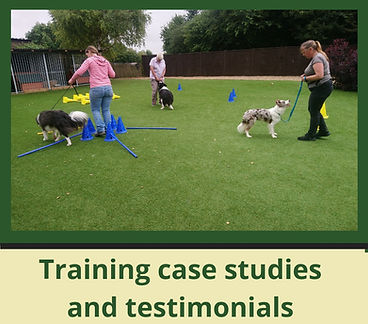 Training%20testimonials_edited.jpg
