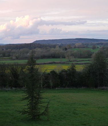 view from house towards Haughmond Hill -