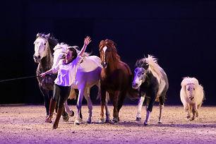 0012nacht_der_pferde_print.jpg
