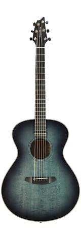 Breedlove Acoustic Guitar Discovery Concert