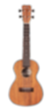 Ibanez Roadcore Electric Guitar