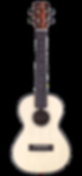 21T Cordoba Striped Ebony Ukulele