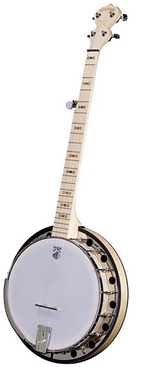 Deering Goodtime Two Banjo GT2