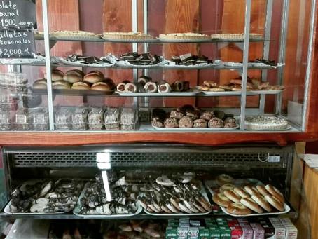 Delicias en el lago Calafquen