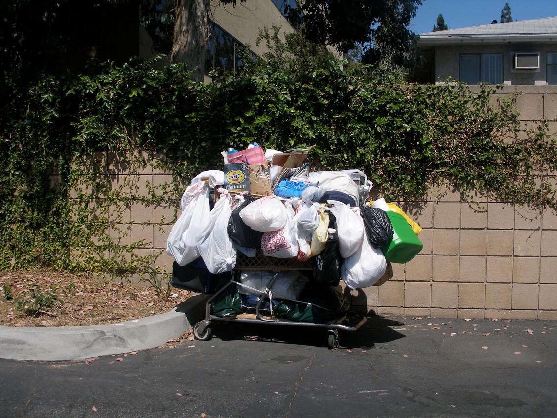Homeless cart #3