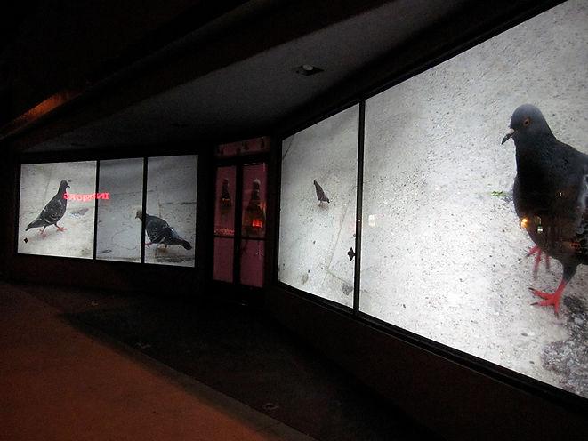 Long Beach Art Council.jpg