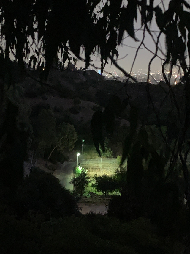 Park view at night