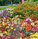 Create a Perennial Butterfly Garden