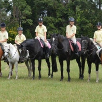 Avondale Pony Club, a slice of paradise in the suburbs