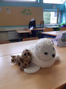 Neue Klassentiere