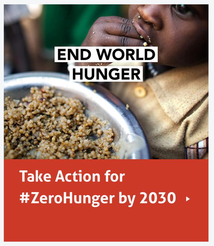 End World Hunger