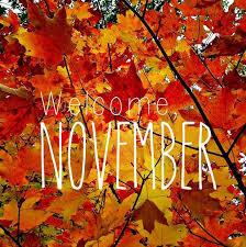 Update - 20th November