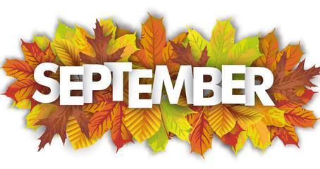 School Update - 24th September