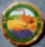 city of brewer challenge coin.jpg
