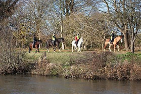 Horse Riding near Hampton Court