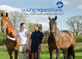 Calling All Young Equestrians