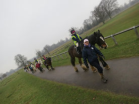 Group horse riding lessons in Bushy Park
