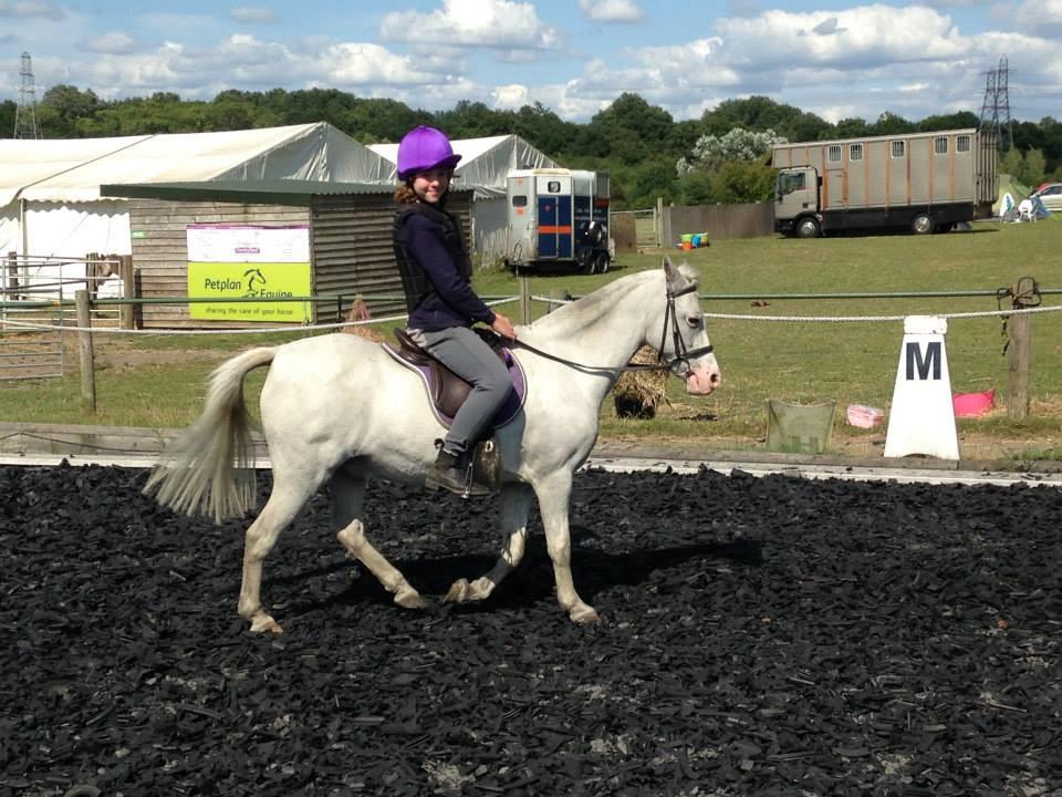 Park Lane Pony Camp 2014