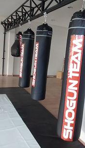 octógono, ringue, octógromo,  octagon, cage, boxe, muay thai, trilho para saco de pancada, suporte de parede, boneco bob, tatame eva