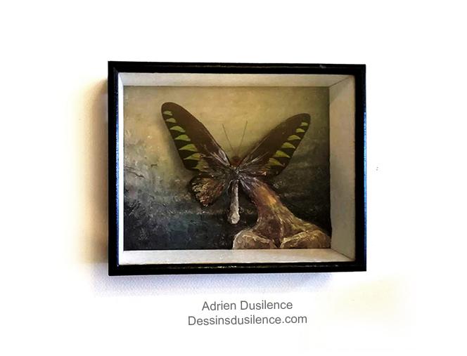 Mr papillon vit dans une boîte