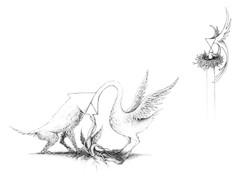Dessin Animaux | Adrien Dusilence