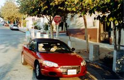xingUSA2006-1.jpg