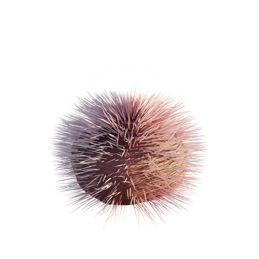 Purple_Sea_Urchin_2.png
