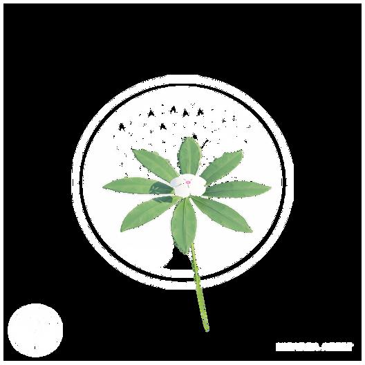Vegetation5.png