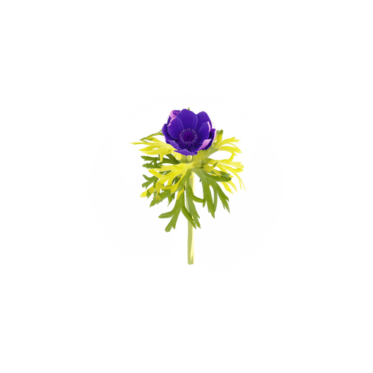 Purple_flower_1.png