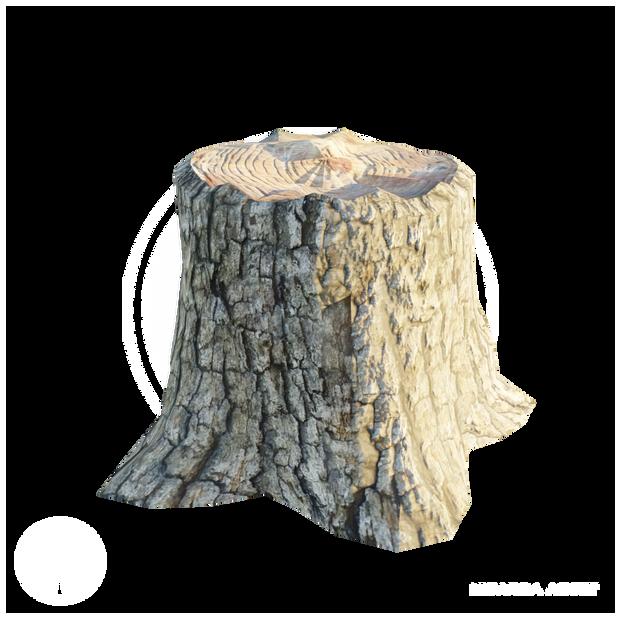 Stump_1.png