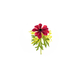 Red_flower.png