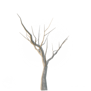 Dried_tree_lowpoly.png