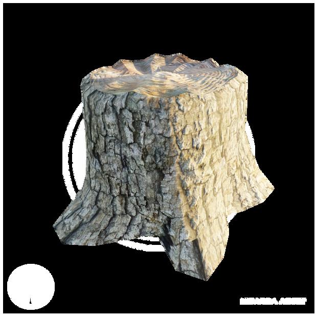 Stump_2.png