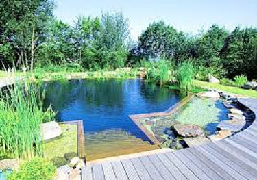 bassin, mare, étang, créer sa mare