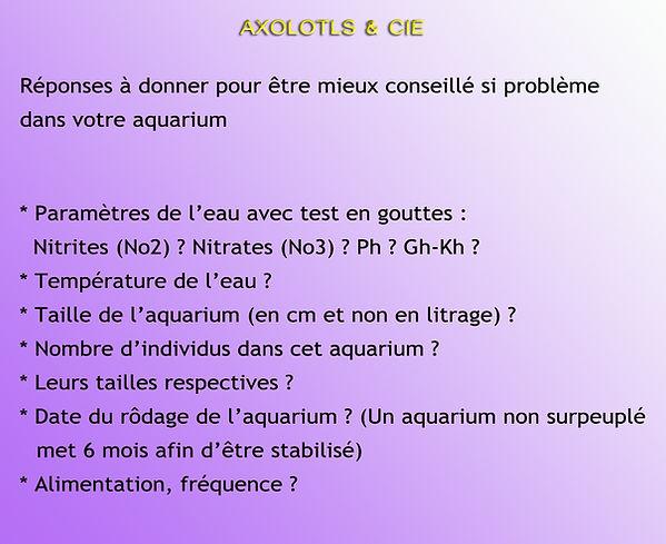 parametres aquarium axolotls questions diverses, taille, rodage, nitrites, nitrates