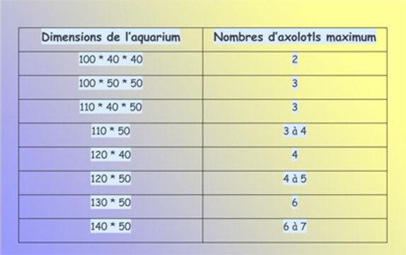 mesures aquarium pour axolotls