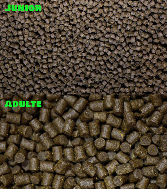 Pellets premium junior 3 mm en 250 ml à 5,00€