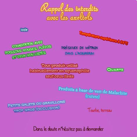 interdits axolotls, iode, cuivre, galets, quartz