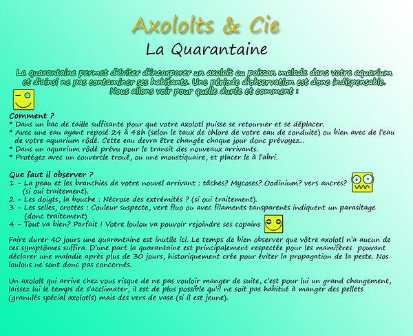 quarantaine axolotls