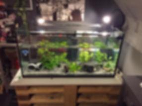 realisation meuble aquarium