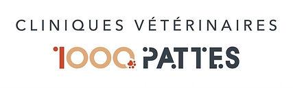 12095_Clinique-Veterinaire-des-1000-PATT