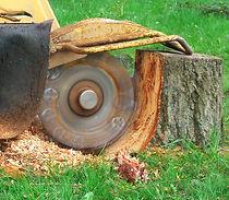stump-grinding1.jpg