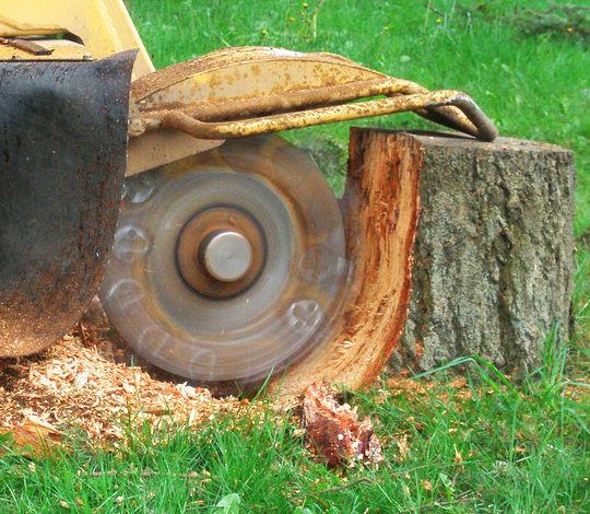 Stump Grinding & Mulching