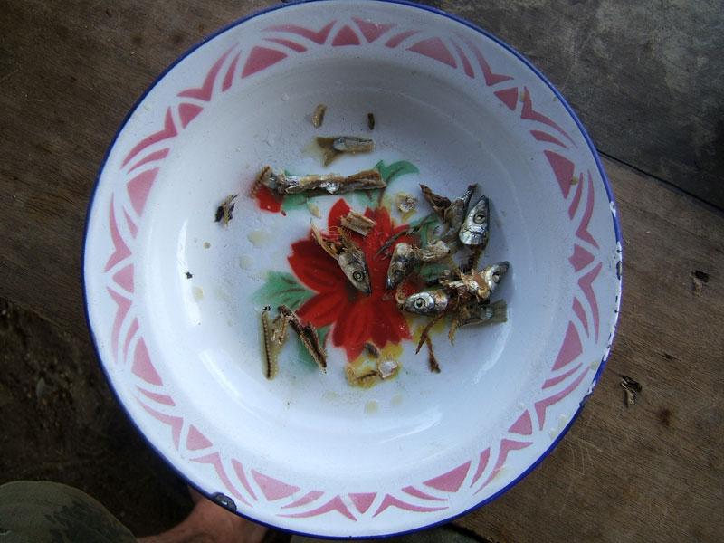 Usipa Breakfast