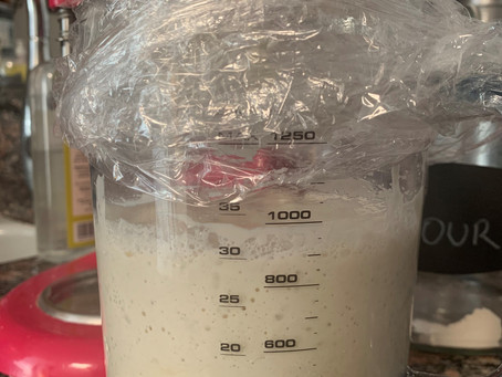 Kitchen Science: Sourdough Starter Day Four