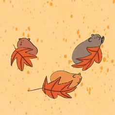 guinea pig leaf surfing