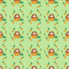 guinea pig carrot pattern