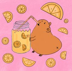guinea pig lemonade