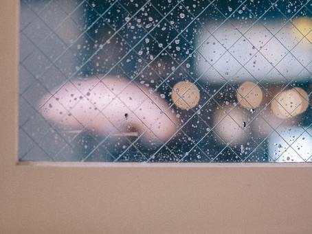雨上がりにはカメラを持って。