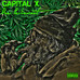 NEW SINGLE: Capital X Dear Parliament